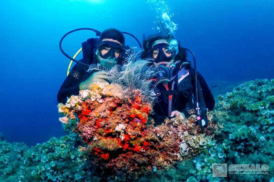 padi-open-water-diver-course-mallorca-2